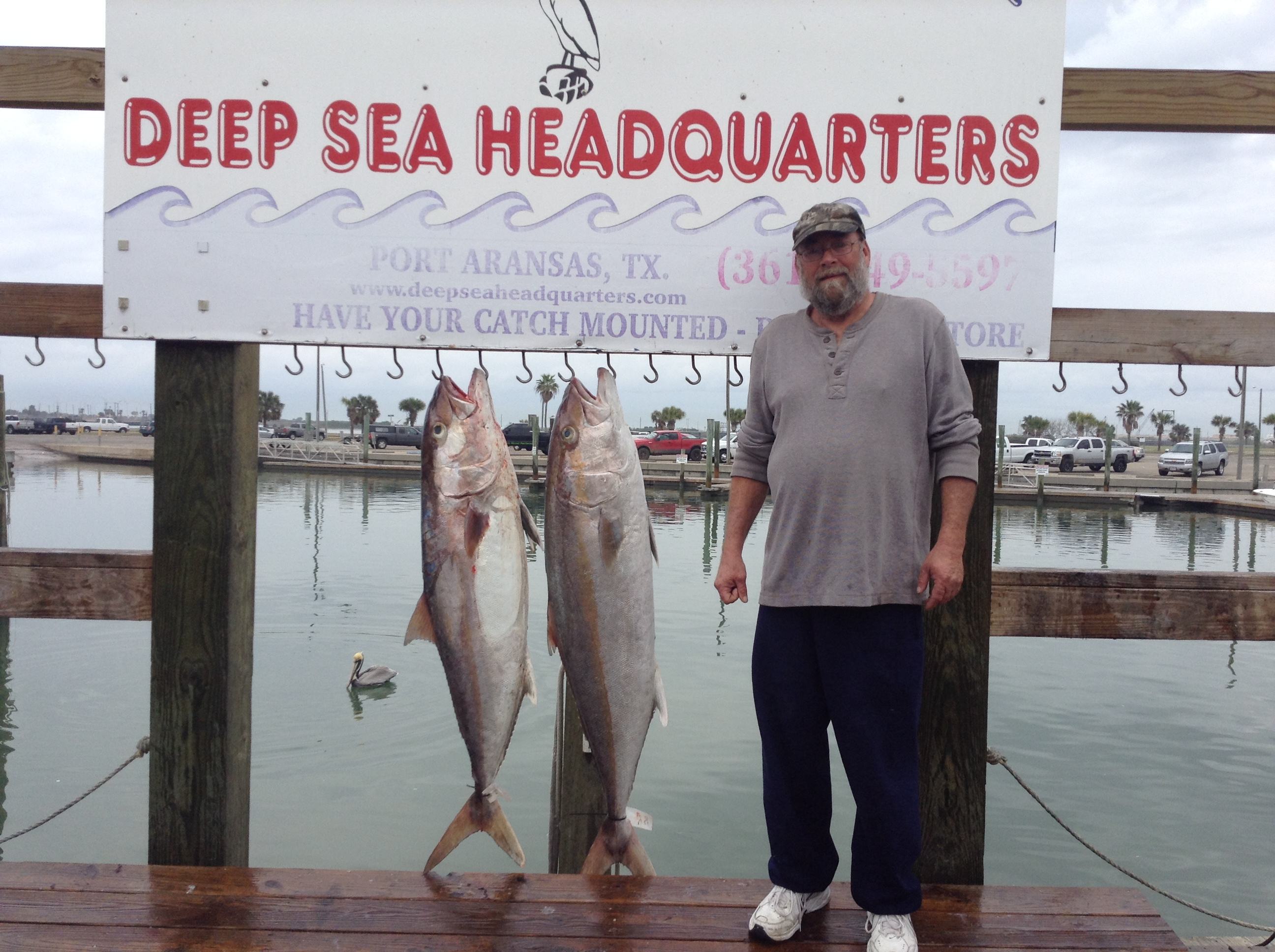 Port aransas fishing report 01 20 2016 for Fishing report port aransas