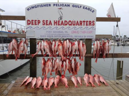 Port_Aransas_Fishing_Report_May_25_image_9