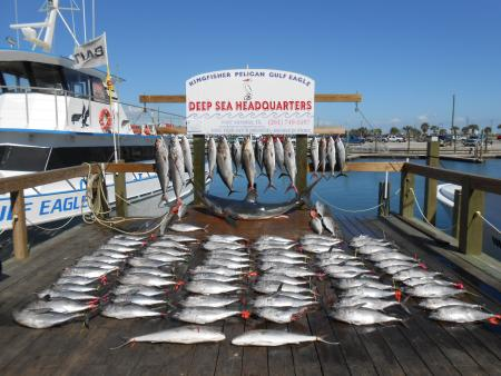 Port_Aransas_Fishing_Report_Feb_23_1